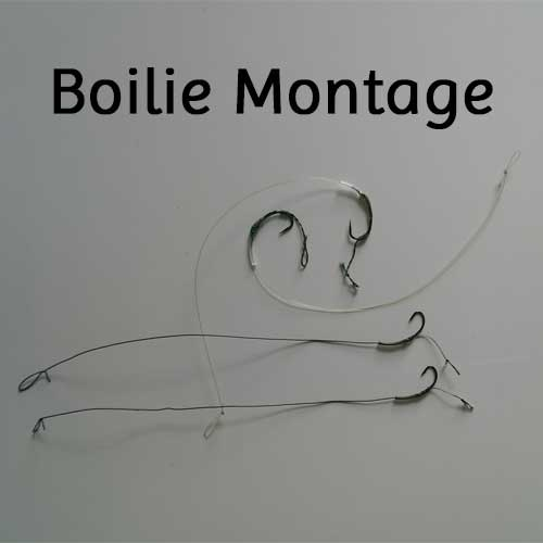Boilie Montage