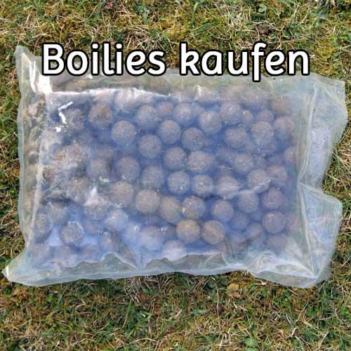 Boilies kaufen
