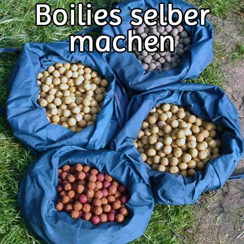 Boilies selber machen